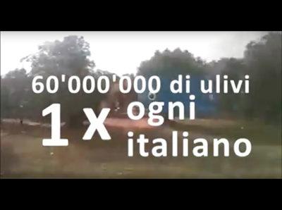 news-04video